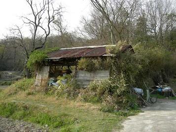 Bamboo_house