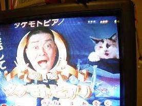 Takemototama
