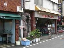 Tanuki2_2