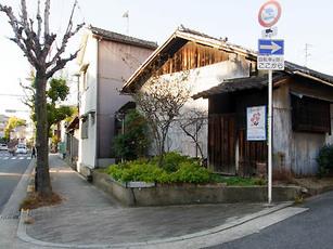 Shigino_e1