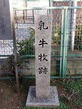Chushimaki2