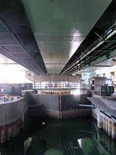 Nishiyoko1