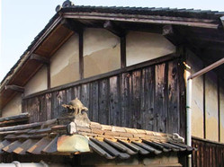 Momotaro2