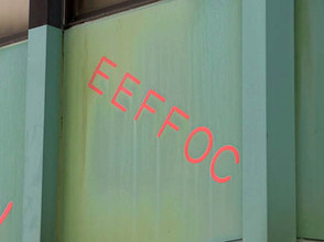 Eeffoc2