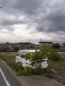 Nishiwakishi1