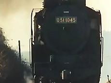 D511045c