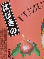 Tsuzuichi2