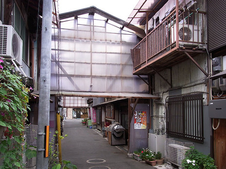 Yanemichi1