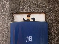 Akagawa2b