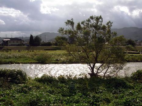 Somagawa1