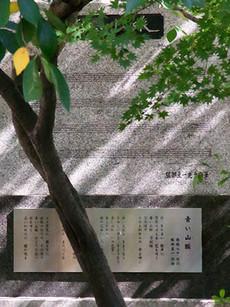 Aoisanmyaku2