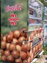 Onion4