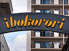 Ibokorori2