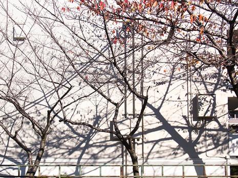 Shinsenri1