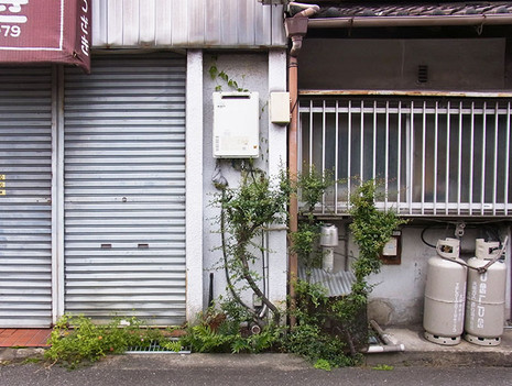 Mizonoki1