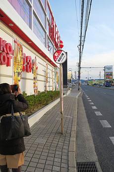Wadagawabashi1_2