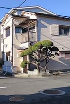 Nihongi1