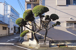 Nihongi2