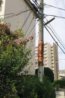 Shimonoike1