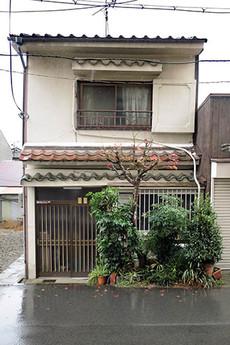 Shokubutsu2