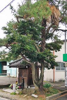 Mitsudomoe1