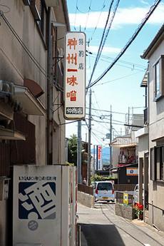 Shinshu1b