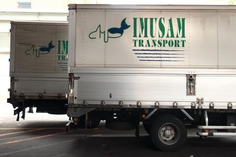 Imusam1