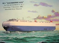Aquamarineace