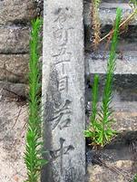 Uchikyu6