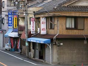 Hatsusakura2