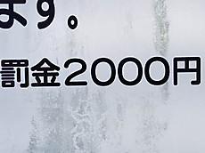 2000d_2