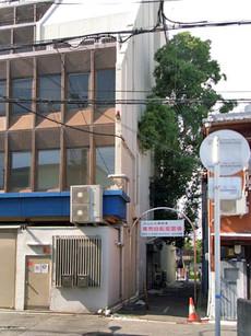 Goshinboku2