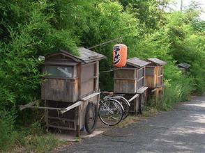 Akagawa2