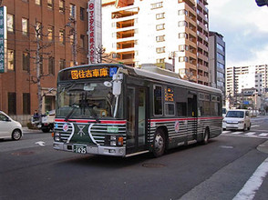 Zebrabus5