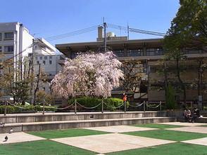 Shiomusu3