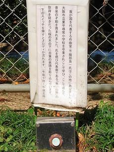 Aoisanmyaku1