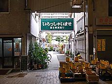 Fujishin1