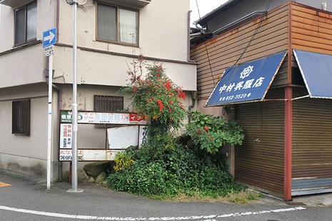 Ryokuchi1
