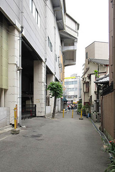 Aogiri1