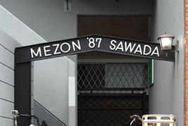Mezon87b