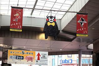 Kumakuma1