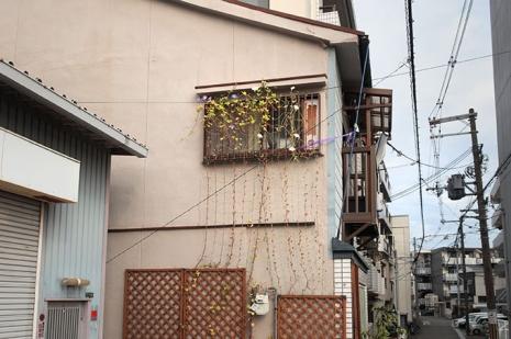 Natsunagori