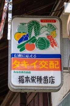 Takiikohai2
