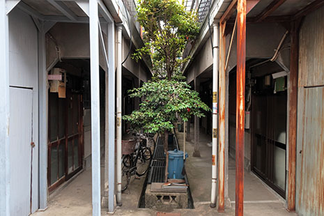 Ryokkabunka